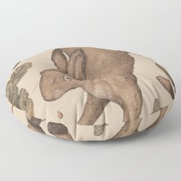 The Hare and Oak Floor Pillow