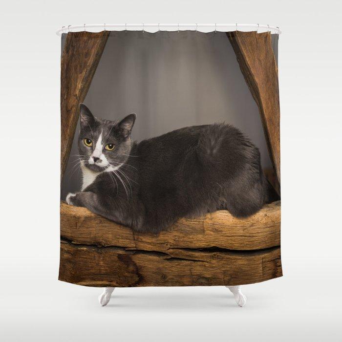 Cat on tree Shower Curtain