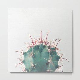 Ferocactus Metal Print
