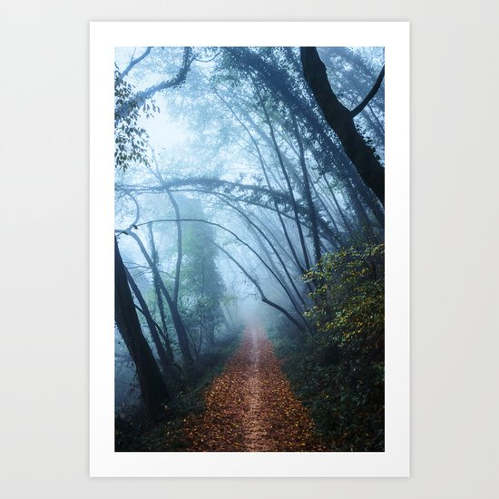 The Forest Beckons Art Print