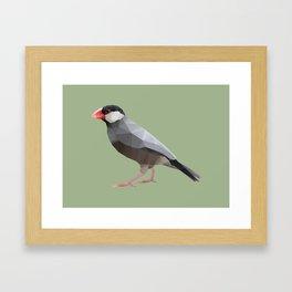 Java Sparrow polygon art Framed Art Print