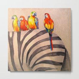 Parrots on Zebra Metal Print