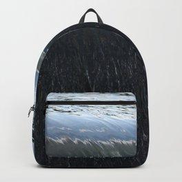 Curve Backpack