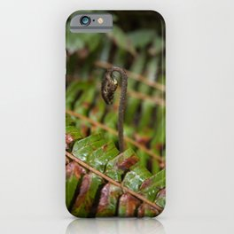 New Fern Growth Rising Above Old in the Pacific Northwest iPhone Case