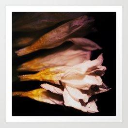 Nyx Series Frame C Art Print