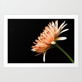 Flower Art Print