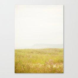 Wild Flowers Lake Michigan South Manitou Canvas Print