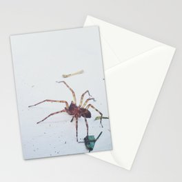 House spider heading out Stationery Cards