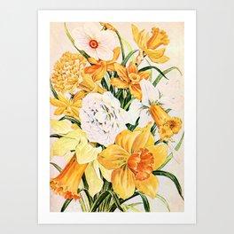 Wordsworth  and daffodils. Art Print