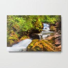 Swiss rapids. Metal Print