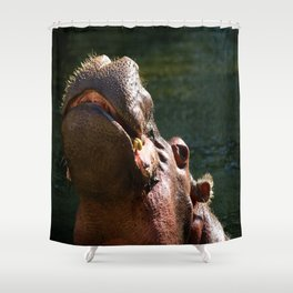 Happy Hipo Shower Curtain
