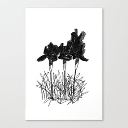 Dark Iris Canvas Print