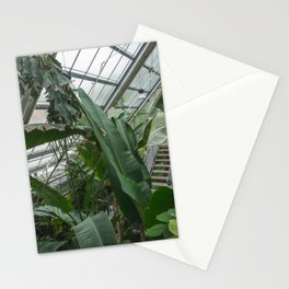 Stairway to paradise Stationery Cards