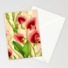 Vintage Sweet Pea Stationery Cards