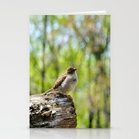 sparrow Stationery Cards featuring Sparrow by KimberosePhotography