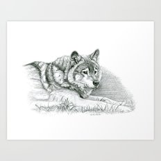 Wolf G036 Art Print