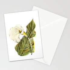 White Calla Lily Stationery Cards