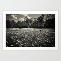 sea of dandelion Art Print