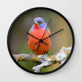 Male Painted Bunting Wall Clock