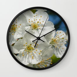 White Cherry Blossoms 01, Spring Wall Clock