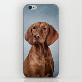 Drawing funny Vizsla Pointer iPhone Skin