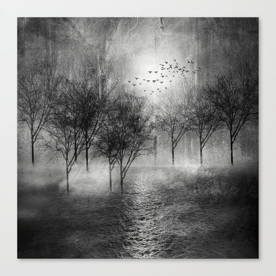 Black and White - Paisaje y color II Canvas Print