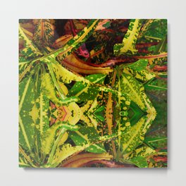 Tropical Croton Plant Metal Print