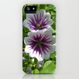 mallow bloom VII iPhone Case