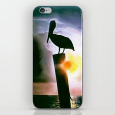 PELICAN PATROL iPhone & iPod Skin