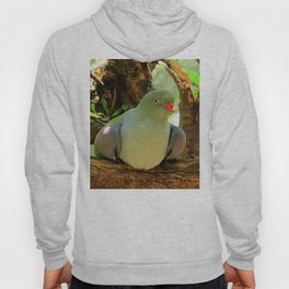 African Green Pigeon Hoody