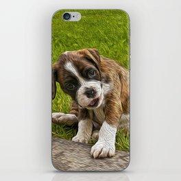 Boxer Pupy iPhone Skin