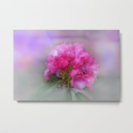 the beauty of a summerday -55- Metal Print