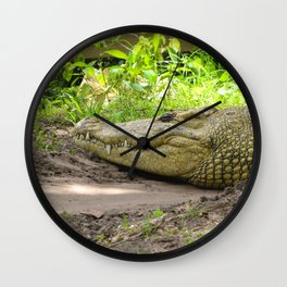 crocodile grin Wall Clock