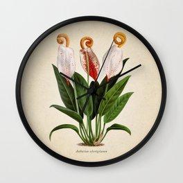 Anthurium scherzerianum old plate Wall Clock