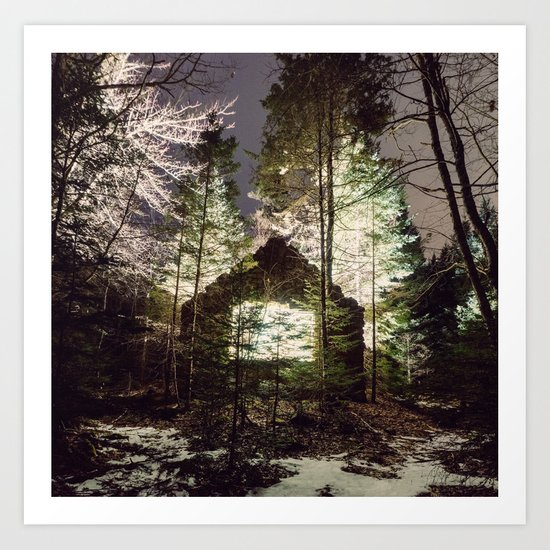 Light in the Forest Art Print