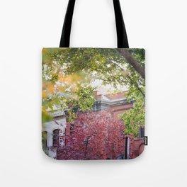Old Neighborhoods Tote Bag