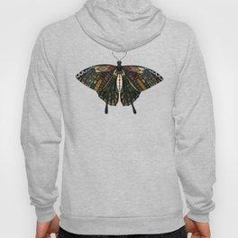 swallowtail butterfly terracotta Hoody