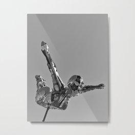 Flying Art Metal Print