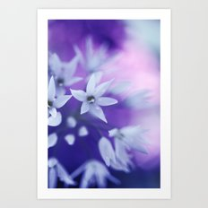 Dusky Violet Art Print