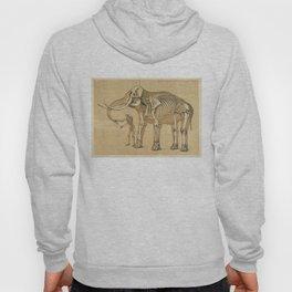 Vintage Elephant and Human Skeleton Illustration Hoody