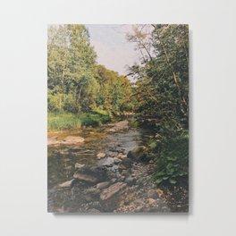 on a journey Metal Print