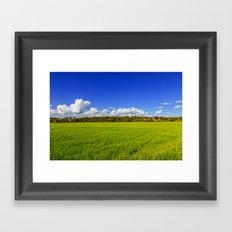 Rice Field II Framed Art Print