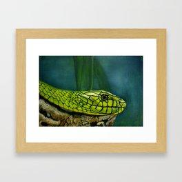 Green Mamba Framed Art Print