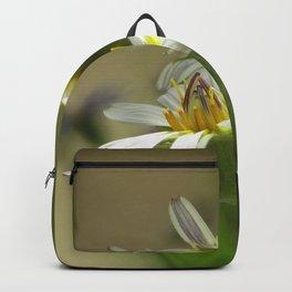 Salsify Backpack