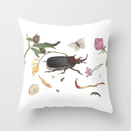 Common place miracles Part iii -Natural History Part Throw Pillow