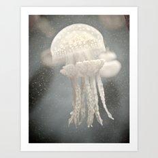 Star Jelly Art Print