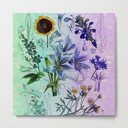 Botanical Study #2, Vintage Botanical Illustration Collage Art Metal Print