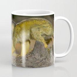 Close Up Of A Black-Capped Squirrel Monkey  Coffee Mug