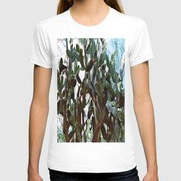 Big cactus T-shirt