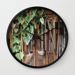 Hedera Ivy growing among gardening tools in a shed. UK. (Shot on film). Wall Clock